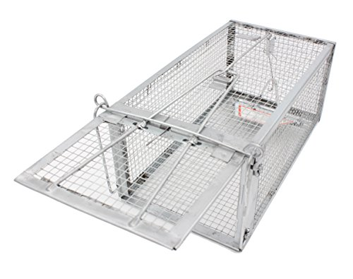 Mibim 1-Door Animal Trap Humane Live Cage with Latch for Vole Chipmunk Squirrel Rat Mouse & Weasel (Medium) ()