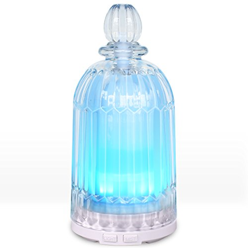 Great Glass Diffuser at A Great Price!