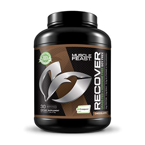 Recover (Best Bulking Protein 2019)