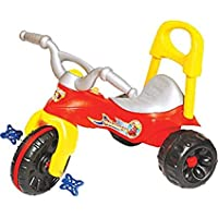 Bluday The Cool Play Tricycle for Kids for 1-3 Years ( Multi Color )