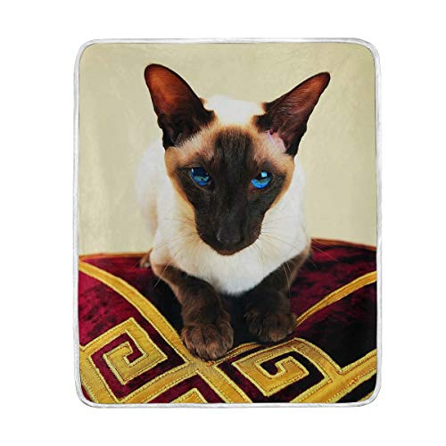 Vipsk Throw Blanket Super Soft Blanket Warm Polyester Microfiber Bed Blanket Lightweight Cozy Sofa Bed/Couch Throw for Beds Office Lap Couch Plush 50x60 Inch (Siamese)