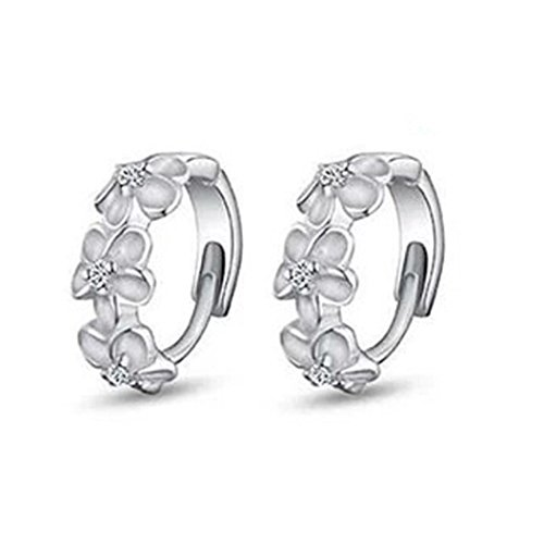 Women Earrings Studs,Lood Elegant Silver Camellia Design Stud Earrings Gifts for Women New,Jewelry Making Charm Kits (A) - European Imports Necklace