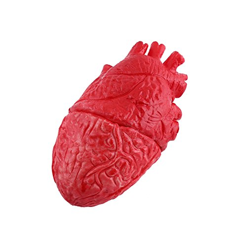 Halloween Haunted Horror Props Fake Body Part Organ Brain Heart Bloody Zombie Food Decoration(Heart)