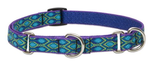 "LupinePet Originals 3/4"" Rain Song 14-20"" Martingale Collar for Medium and Larger Dogs"