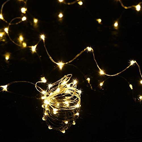 HAOSEE 24 Pack Led Fairy Lights Battery Operated,3.3Ft 20 LED Silver Wire Warm White Firefly Lights,Waterproof Mini Starry String Lights Twinkle Lights for Wedding Party Mason Jars DIY Christmas Decor by HAOSEE (Image #2)