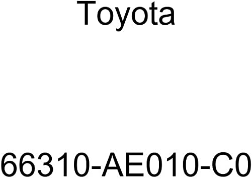 TOYOTA 66310-AE010-C0 Rope Hook Assembly