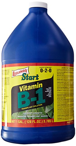 Liquinox 0-2-0 Start with Vitamin B-1, 1-Gallon