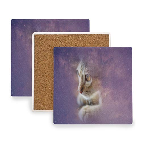 (Cat And Milky Way Coasters, Protection for Granite, Glass, Soapstone, Sandstone, Marble, Stone Table - Perfect Cork Coasters,Square Cup Mat Pad for Home, Kitchen or Bar Set of 2)