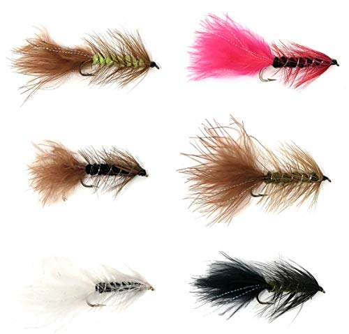 Feeder Creek Fly Fishing Assortment - Wooly Bugger Mega Assortment - 48 Flies Trout Other Freshwater Fish - 6 Pattern Multi Color Variety Black, White, Brown, Olive, Yellow Red Plus Flash