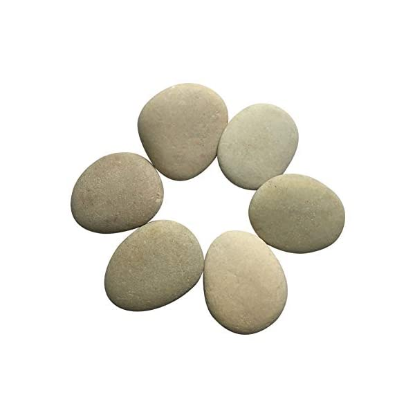 Lifetop-Painting-Rocks-Set-of-6-DIY-Rocks-for-Painting-Kindness-Rocks-Smooth-Surface-StonesArts-and-Crafts-Style-2