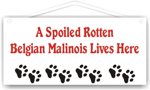 (A Spoiled Rotten Belgian Malinois Lives Here)