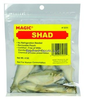 Magic 5255 Preserved Whole Shad
