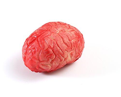 TME Halloween Prop Bloody Scary Fake Organ Human Brain Body Parts Horror