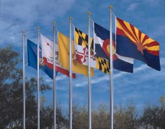 Online Stores 50 State Polyester Flag Set by Online Stores