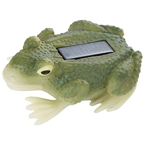 Trenton Gifts Solar Frog (His Boy Garden Fountain)