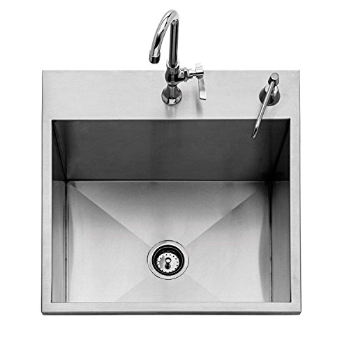 (Twin Eagles Outdoor Sink (TEOS24-B), 24-Inch )