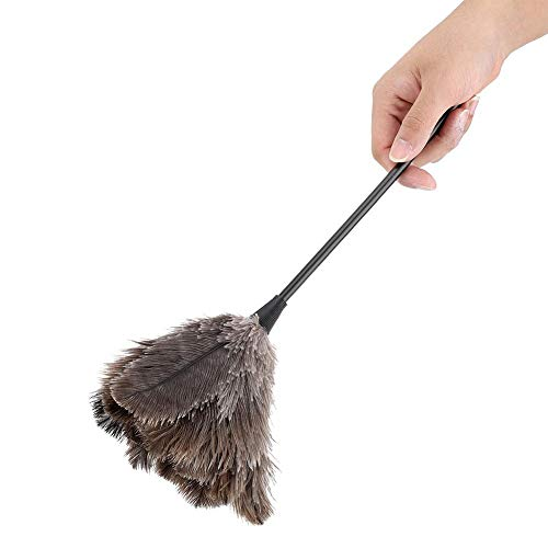 Ostrich Feather Duster, Mini Handmade Long Handle Soft Ostrich Cleaning Duster For Dusting Household Ornaments, Light Fittings, Fan Blades