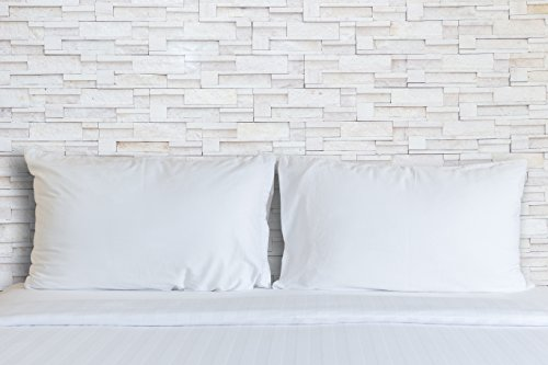 Continental Bedding Premium 100% White Goose Down Pillow. Standard Size [Soft] (Set of ()