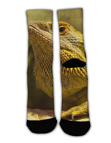 MrDecor Novelty Cool Crazy Funny Dress Socks,Funny Bearded Dragon Lizards Art Cotton Crew Socks, Gifts for -