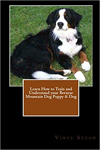 Learn How To Train And Understand Your Bernese Mountain Dog