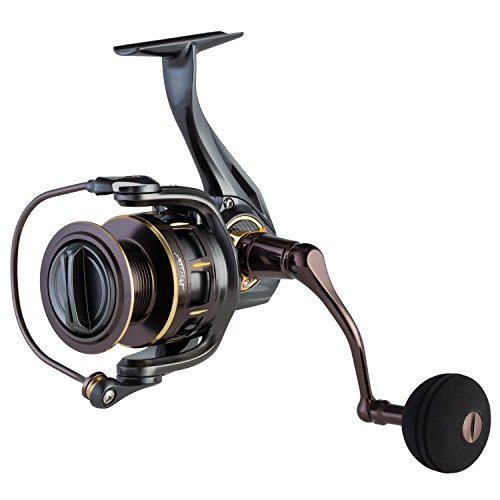 Piscifun Stone 4000 Saltwater Spinning Reel - All Aluminum, 10 Stainless Steel Shielded Bearings, Super Powerful Smooth Fishing ()