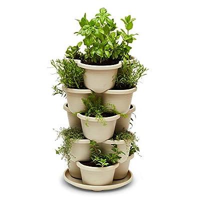 Stackable Planter Vertical Garden for Vegetables, Flowers, Herbs, Succulents, Microgreens, Gardening, 5 Tier Growing System for Indoor and Outdoor, Porch Towergarden, Hanging Planter with Starter Pots: Garden & Outdoor