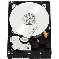WD RE SAS 3 TB Enterprise Hard Drive: 3.5 Inch, 7200 RPM, SAS, 32 MB Cache - WD3001FYYG