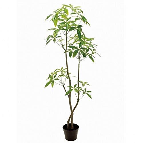 人工観葉植物 バキラ6F 高さ180cm fg12100 (代引き不可) インテリアグリーン 造花 B07SQC4PZM
