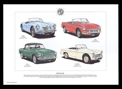 MG Classic Car Greats - MGA, MGB, MGC, MG Midget - Art Print