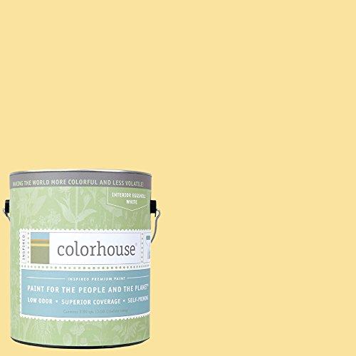 Inspired Eggshell Interior Paint, Aspire .02, Gallon