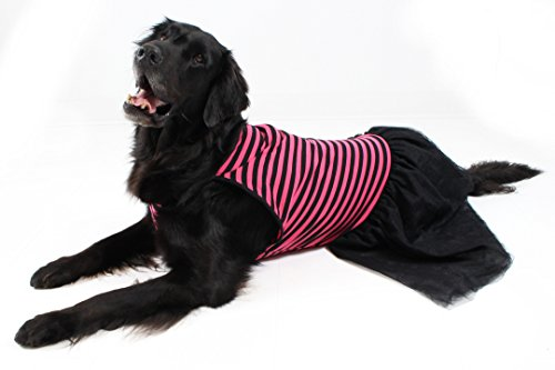 Picture of Pink & Black Stripe Tutu Large Dog Dress by Midlee (XX-Large)
