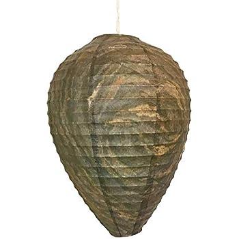 Amazon.com : FMI Brands Inc. Original Get Lost Wasp Natural ...