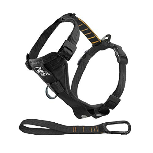 Kurgo Dog Harness | Pet Walking Harness | Small | Black | No Pull Harness Front Clip Feature for Training Included | Car Seat Belt | Tru-Fit Quick Release Style
