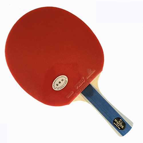 Palio Master 2 Table Tennis Racket Amp Case Buy Online In