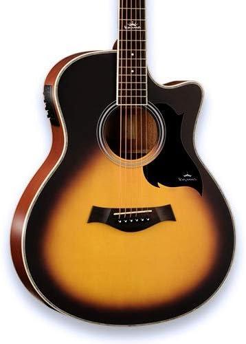 Boll-ATur Paquete de guitarra acústica-eléctrica Thinline Cutaway de tamaño completo de 40