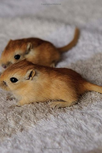 Two Adorable Baby Gerbils Pocket Pets Journal: 150 Page Lined Notebook/Diary pdf epub