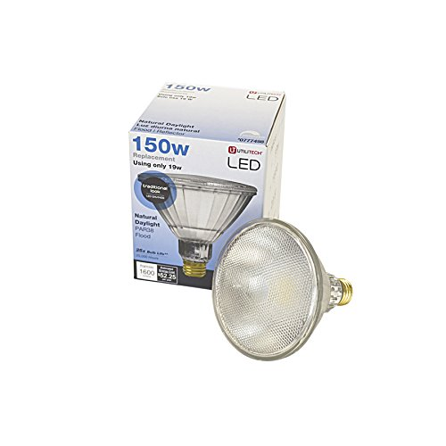 Outdoor Led Light Fixtures Lowes in Florida - 4