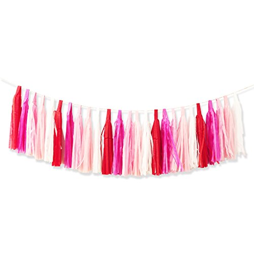 25pcs DIY Assembled Tissue Paper Party Tassel Garland Pom Poms for Wedding Birthday Baby Shower Party Decorations Pink