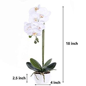 LIVILAN Silk Phalaenopsis Flower Arrangement 2