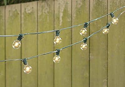 LED Globe String Lights, G40 Bulb, 25 Ft Green C7 Strand, Warm White