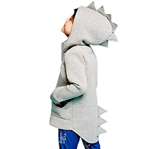 Charm Kingdom Baby Boys Long Sleeve Dinosaur Hoodies Toddler Zip-up Jacket Clothes (4T, Grey)