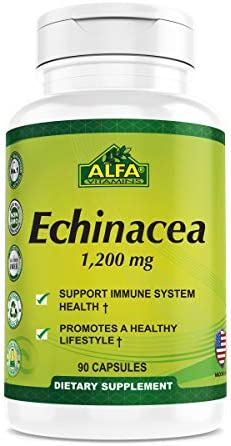 Echinacea 1200 Mg – Immune System Support, Natural laxative, Mental Health support, Anti-Inflammatory herbal Supplement – 90 Capsules