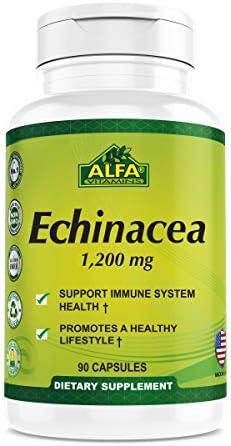 Echinacea 1200 Mg Echinacea Supplement