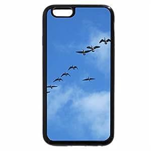 iPhone 6S Plus Case, iPhone 6 Plus Case, Flying Ducks over the park