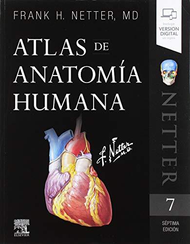 Atlas de anatomía humana - 7ª Edición por F.H. Netter