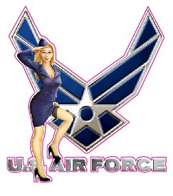 amazoncom us air force pin up 5quot decal free shipping
