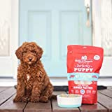 Stella & Chewy's Perfectly Puppy Freeze-Dried Raw