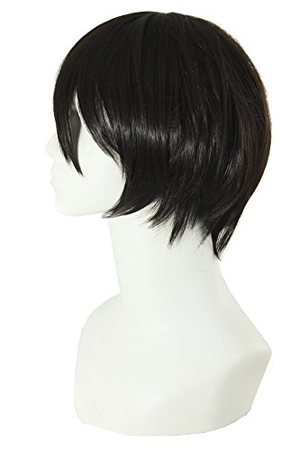 MapofBeauty Men's Short Straight Wig Cosplay Costume Wig (Black) - http://coolthings.us