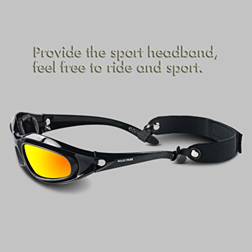 8a56439288 AULLY PARK Polarized Motorcycle Riding Glasses Black Frame - Import It All