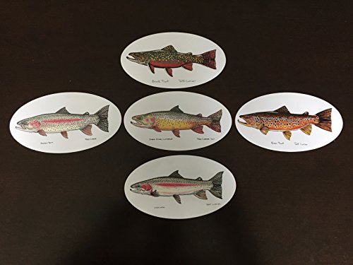 Trout Package (Ultimate Trout Decal Package - Jeff Currier Fish Stickers / Decals - Vinyl and waterproof - Perfect Fishing Gift - Fly fishing - Fishing Bumper Sticker - 5 Different Trout - Stocking Stuffer)
